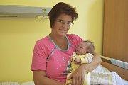 Malá Josefína Řeháková se narodila manželům Soně a Jiřímu Řehákovým 24. května v3.28. Při narození vážila 3580 gramů a měřila 51 centimetrů. Doma vobci Přestavlky u Čerčan na ni čekají sestřičky Míša (19), Eliška (15) a Lucka (10).