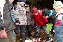 Děti se o přírodě nejen učí, ale také přírodě pomáhají.