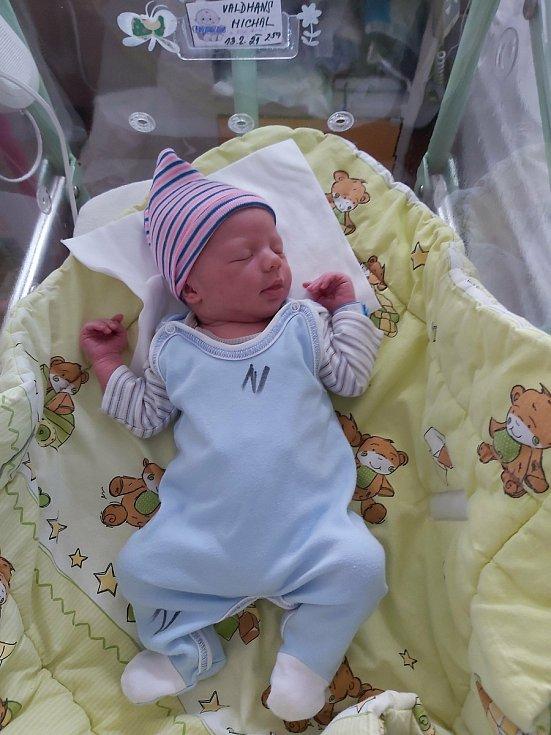 Michal Valdhans se narodil 13. února 2021 ve 2:59 v Porodnici u Sluneční brány v Hořovicích.  Po narození měřil 48 cm a vážil 3060 g. S maminkou Nikolou Matějkovou a tatínkem Radkem Valdhansem bude bydlet v Olešné u Hořovic.