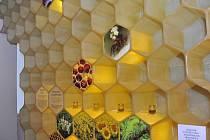 Včelí svět v Hulicích se otevřel návštěvníkům v noci.