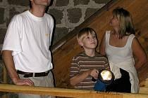 V Týneckém hradu je kolonie netopýra velkého
