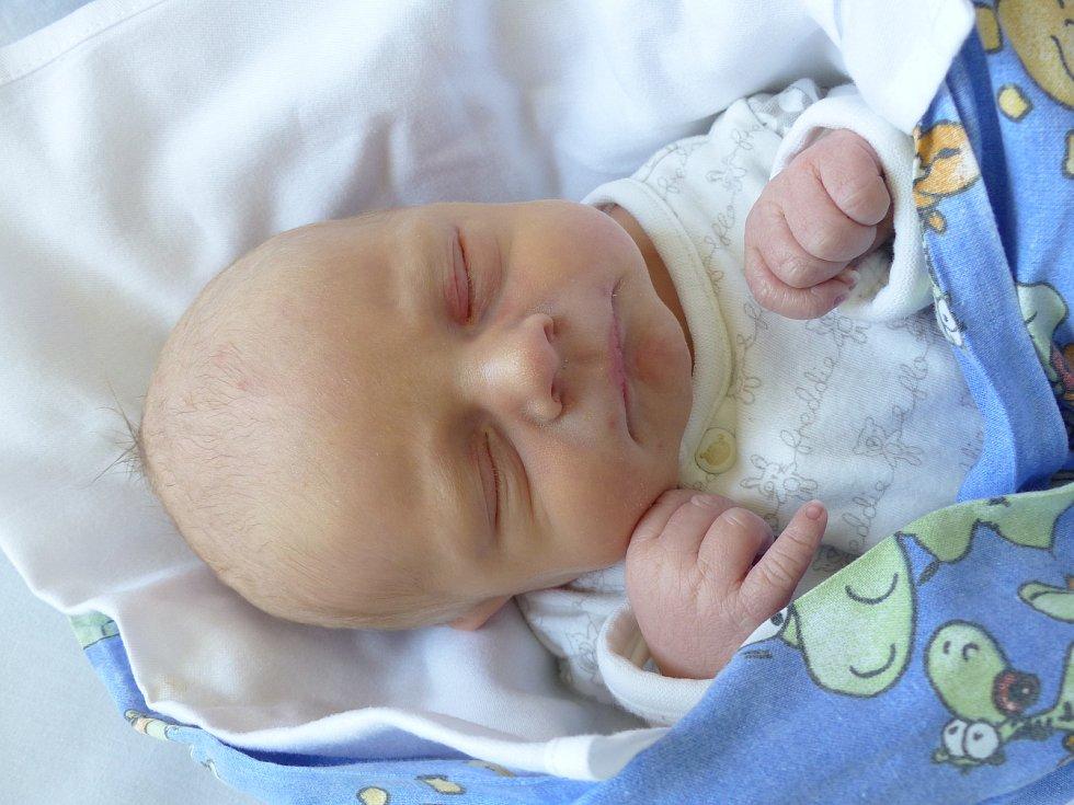 Dominik Flegr se narodil 20. dubna 2021 v kolínské porodnici, vážil 2895 g a měřil 47 cm. Ve Zruči nad Sázavou bude vyrůstat s maminkou Monikou a tatínkem Petrem.