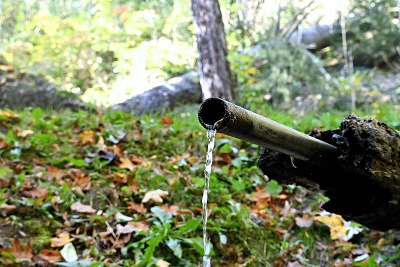 V lese nad Českým Šternberkem se ukrývá pramen Katovka 05