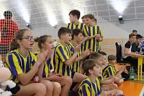 Z okresního finále ve vybíjené žáků a žákyň pro školní rok 2018/2019 v Benešově.