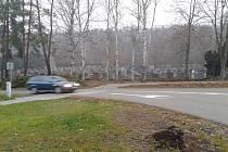 Kácení tújí na novém hřbitově v Týnci nad Sázavou.