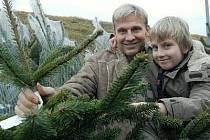 Kupování vánočních stromků