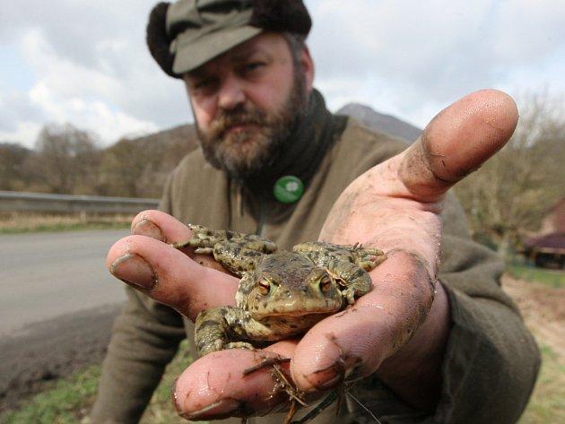 Na začátku jary by si měli řidiči dát pozor na migrující žáby.