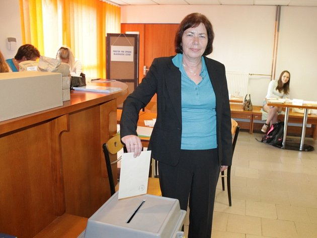 Volby do obecních zastupitelstev jsou naplánovány na 10. a 11. října.