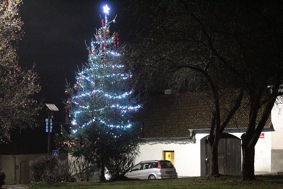 Vánoční strom na náměstí v Postupicích.