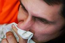 Ilustrační foto : chřipka