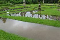 Zaplavená Růžová zahrada v konopišťském zámeckém parku.