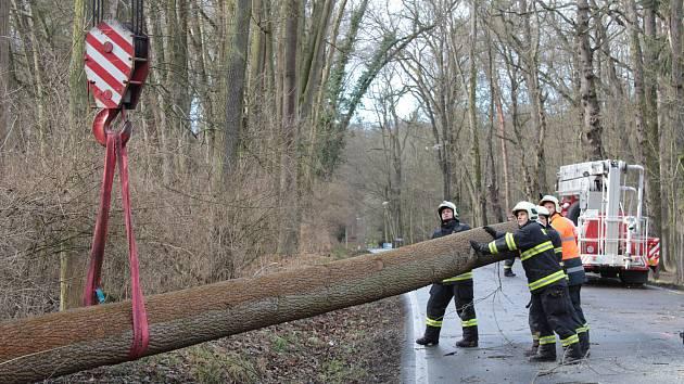 Prudký vítr zasáhl Benešovsko v pondělí 10. února 2020.