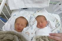 Kamila a Karolína Najbrtovy se narodily 27. února 2021 v kolínské porodnici. Kamila vážila 2530 g a měřila 48 cm. Karolína měla míry 2275 g a 45 cm. V Pískové Lhotě se z nich těší maminka Klára a tatínek Kamil.