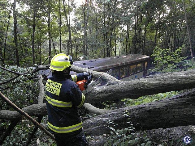 Osobní motorový vlak naštěstí narazil do stromu v malé rychlosti.