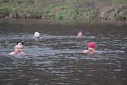 Šesté plavání ledovou Sázavou v týneckém Náklí.
