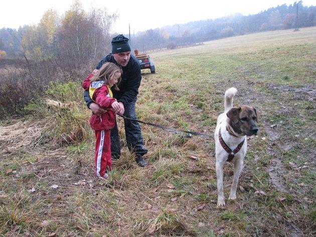 Závody psích spřežení ve Voticích