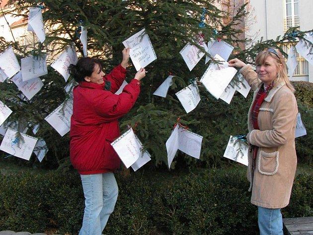 Lide mohou vybírat přání na vánočním stromku