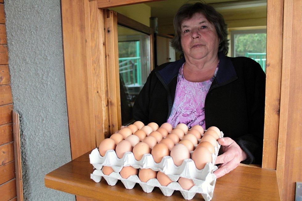Prodej čerstvých vajec ve společnosti Mydlářka u Benešova.