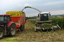 Rodinná farma Patáků z Minártic žně zakončila posekáním kukuřice na siláž.
