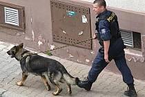 Policejní psovod hledá bombu na poště v Benešově.