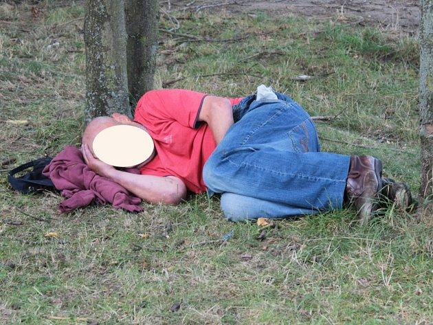 Teplé počasí uspalo některé jedince pod stromem nebo na lavičce.