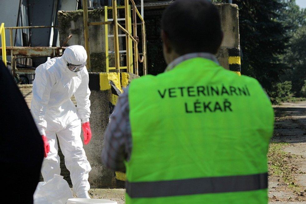 Kvůli viru ptačí chřipky platí u Jankova mimořádná veterinární opatření. Snímek zachycuje cvičení složek IZS v Líšně.