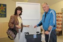 Volby do Evropského parlamentu ve Václavicích.