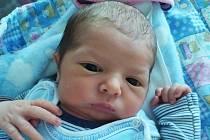 Dan Podroužek se narodil v porodnici v Hořovicích 24. 4. 2021 v 17:41. Vážil 3350 g a měřil 50 cm. Jeho maminka se jmenuje Tereza Podroužková, tatínek Jiří Podroužek a doma v Králově Dvoře na něj čekal bráška Mareček Podroužek.