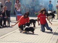 Tanec se psy předvedla děvčata z Benešova na sobotním srazu heligonkářů v Jankově