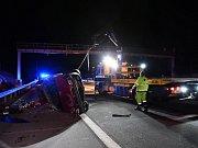 Krávy pobíhající po dálnici D1 u Ostředka způsobily hromadnou nehodu.