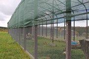 Nemocná zvířata našla domov v záchranné stanici v Pavlovicích.