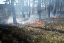 Požár lesního porostu. Archivní foto.