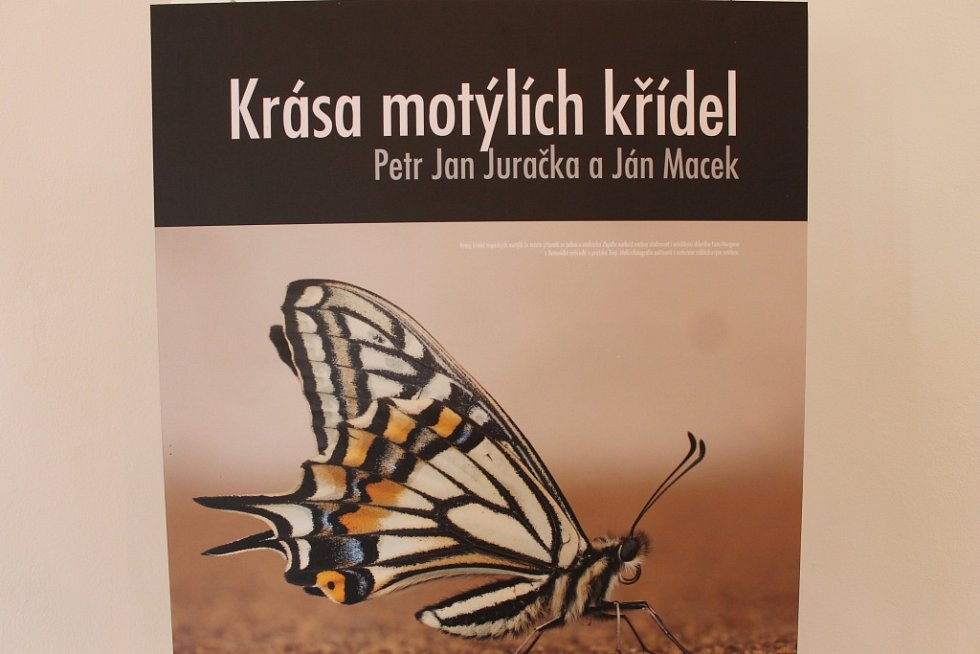 Výstava fotografií Petra Jana Juračky a Jána Macka.