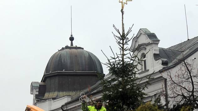 Vánoční smrk z obecních lesů v Tužince ve středu ráno osadili na benešovském Masarykově náměstí.