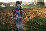 Předškoláci  na zahradě mateřské školy uklízeli spadané listí a přitom pokukovali po nových herních prvcích, které v její zadní části instalovali řemeslníci.