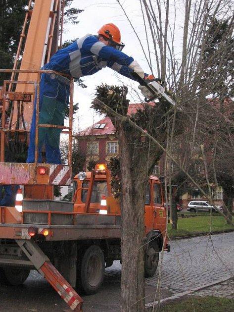 Prořezávání stromů na Husově náměstí v Benešově