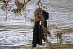 Týnec nad Sázavou po povodních 2006