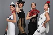 Vlašimský zámek se bude ve čtvrtek večer vlnit v rytmu flamenka.