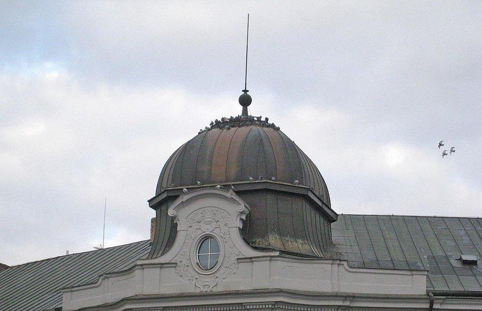Holubi na střeše Hotelu Pošta v Benešově.