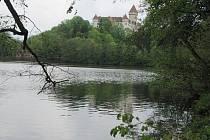 Konopišťský rybník se prý dočká odbahnění napřesrok.