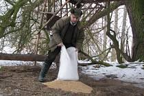 Přikrmování je důležité i v nadprůměrně teplé zimě.