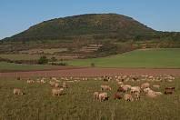 Hora Říp - ilustrační foto