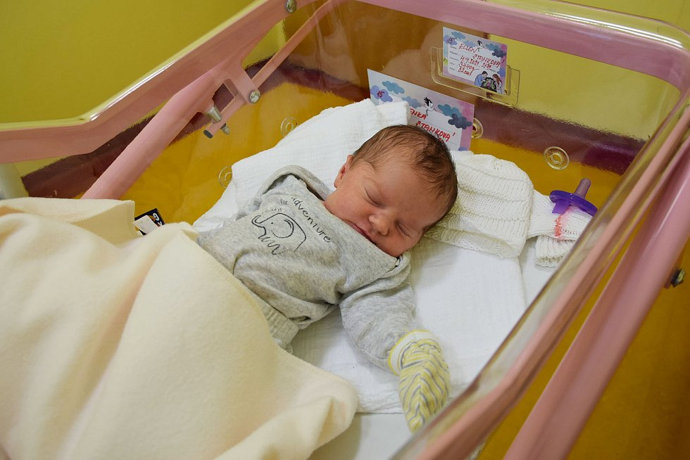 Ellen Stanková se Viktorii Raulímové a Richardu Stankovi narodila v benešovské nemocnici 4. září 2021 ve 21.30 hodin, vážila 3440 gramů. Rodina bydlí v Praze.