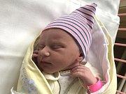 LARA ŠOULEJ, KRALUPY NAD VLTAVOU. Narodila se 22. května 2019. Po porodu vážila 2,39 kg a měřila 48 cm. Rodiče jsou Štěpánka Šoulej Bubeníková a Josef Šoulej. (porodnice Slaný)