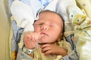 MICHAEL JIRSA, PRAHA. Narodil se 17. ledna 2018. Po porodu vážil 3,66 kg a měřil 52 cm. Rodiče jsou Vendula Jirsová a Marcel Jirsa. (porodnice Kladno)