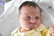 VIKTORIE ZMRHALOVÁ, DOMOUŠICE. Narodila se 12. března 2018. Po porodu vážila 2,97 kg a měřila 49 cm. Vladimíra Marková a Vladimír Zmrhal. (porodnice Slaný)