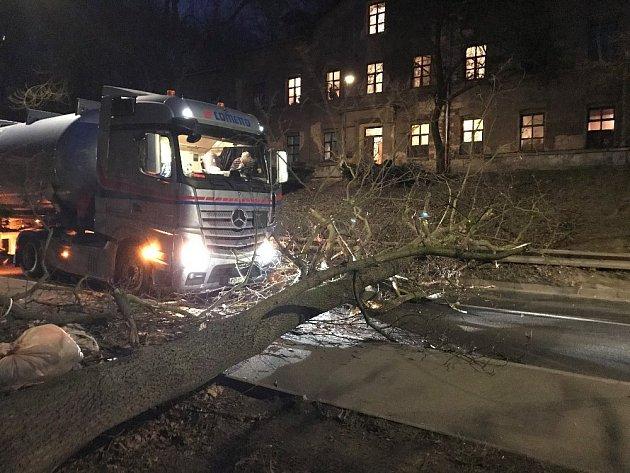 Ve Slaném vOuvalově ulici spadl strom přímo před projíždějící kamion, který do něj následně naboural.