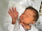 OLIVER ANGERVAKS, SLANÝ. Narodil se 25. října 2018. Po porodu vážil 3,77 kg a měřil 50 cm. Rodiče jsou Egeniia Angervaks a Anton Angervaks. (porodnice Kladno)