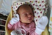 Kateřina Dudziková, Kladno. Narodila se 25. dubna 2017. Váha 3,26 kg, míra 50 cm. Rodiče jsou Jana Černá a Ota Dudzik (porodnice Kladno).