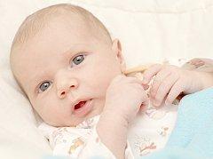 Loukotová Alice, Kladno.  Narodila se 11. prosince 2013. Váha 3.23 kg, míra 51 cm. Rodiče jsou Martina a Leoš Loukotovi, bráška Alex (por. U Apolináře Praha).